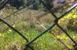 REF: T4839 - Terreno em Condomínio em Atibaia-SP  Condomínio Refúgio