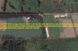 REF: 11837 - Sitio em Piracaia-SP  Guaxinduva