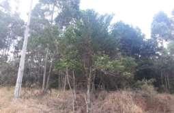 Terreno em Atibaia-SP  Bosque dos Eucalíptos