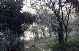REF: T5035 - Terreno em Atibaia-SP  San Fernando Valley