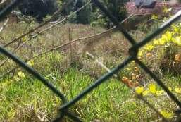 Terreno em condomínio à venda  em Atibaia-SP - Condomínio Parque das Garças REF:T5673