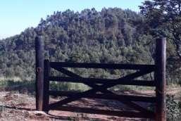 Sitio à venda  em Piracaia-SP - Guaxinduva REF:11837