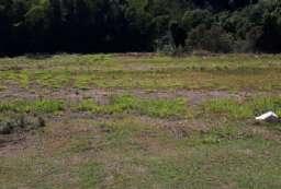 Terreno em condomínio à venda  em Atibaia-SP - Condomínio Porto Atibaia REF:T5594