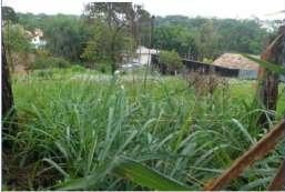 Terreno para locação  em Atibaia-SP - Parque da Represa REF:T5247