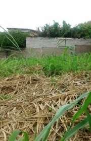 terreno-a-venda-em-atibaia-sp-jardim-do-lago-ref-t4695 - Foto:1