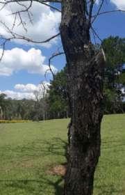 sitio-a-venda-em-piracaia-sp-dos-cubas-ref-11805 - Foto:6