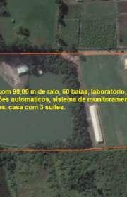 sitio-a-venda-em-piracaia-sp-guaxinduva-ref-11837 - Foto:1