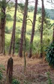 sitio-a-venda-em-piracaia-sp-canedos-ref-12081 - Foto:11