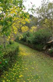 casa-a-venda-em-camanducaia-mg-estrada-rural-ref-12630 - Foto:15