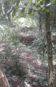 terreno-a-venda-em-camanducaia-mg-bairro-jaguari-do-meio-ref-t5772 - Foto:13